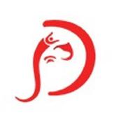 DivyaPuja icon