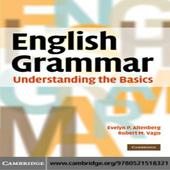 English Grammar Understanding the Basics icon