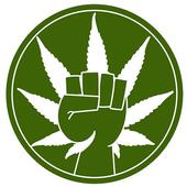 marijuana grow app