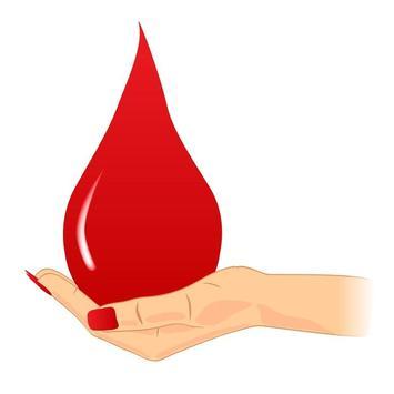 Blood donate online database screenshot 1