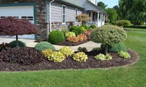 Easy Landscaping Ideas-Better Homes and Gardens apk screenshot