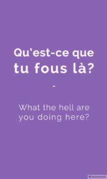 Learning French Ebook apk screenshot
