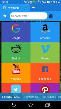 Lite Browser poster