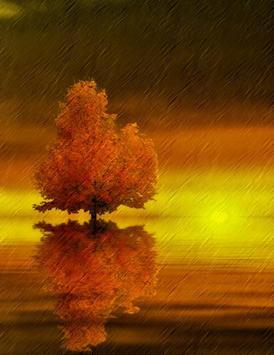 Lonely Beautiful Trees apk screenshot