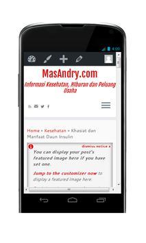 MasAndry.com poster
