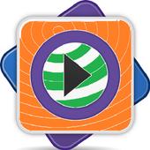 Media Player icon