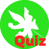 Quiz Melendi icon