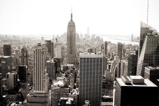 New York City Landscape screenshot 1