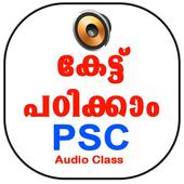PSC Audio Class icon