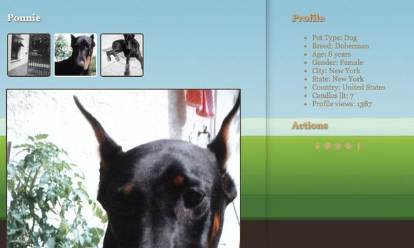 PetGraveBook screenshot 3