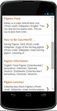 Pigeons Facts screenshot 1