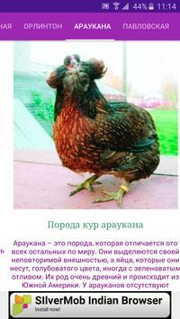 Breeds of chickens - Incubator screenshot 1