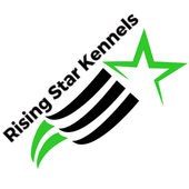 RSK Direct Chat icon