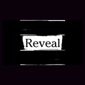 Reveal the image icon