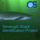 Sevengill Shark Observer icon