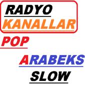 radyolar, ulke geneli karma icon