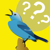 Guess the bird image icon