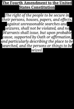 The 4th Amendment poster