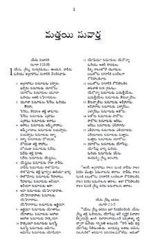 The Telugu Bible NT screenshot 1