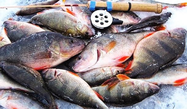Все о рыбалке screenshot 11