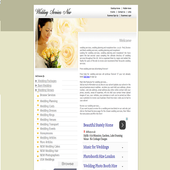 WEDDING SERVICES NOW USA icon