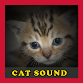 Meow Cat Sounds icono
