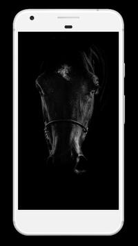 Horse Wallpaper HD poster