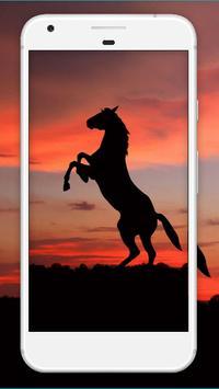 Horse Wallpaper HD screenshot 2