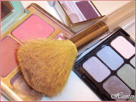 Walmart Makeup Brushes poster