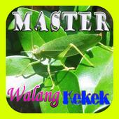 Master Walang Kekek Offline icon
