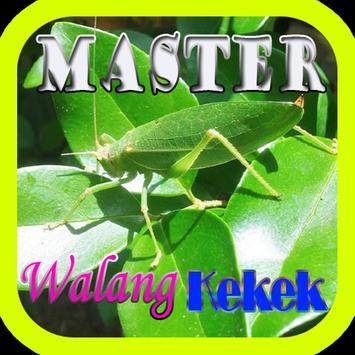 Master Walang Kekek Offline poster