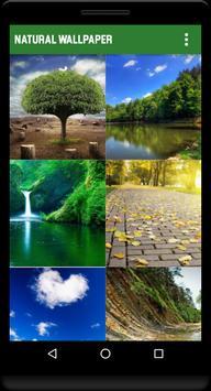 Natural Wallpaper HD poster