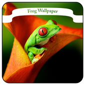 Frog Wallpaper icon