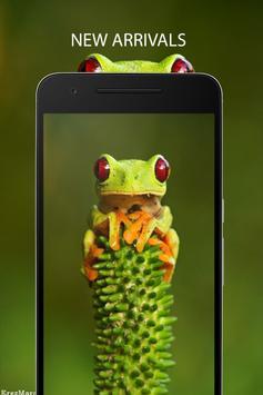 Frog Wallpaper apk screenshot