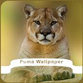 Puma Wallpaper icon