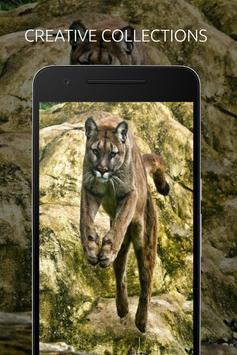 Puma Wallpaper apk screenshot