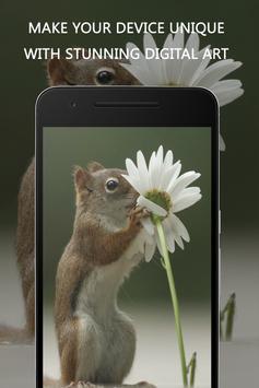 Squirrel Wallpaper apk screenshot