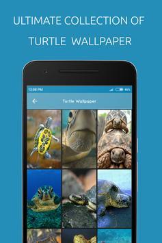 Turtle Wallpaper poster