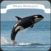 Whale Wallpaper icon