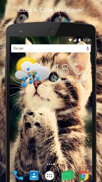 HD Cat Wallpaper apk screenshot