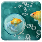 Live Fish Wallpaper icon