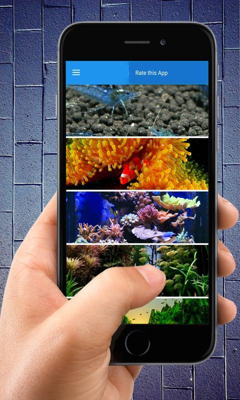 Live Wallpapers Aquascape 3d For Android Apk Download