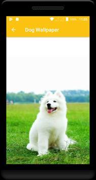 Dog Wallpaper apk screenshot