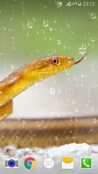 Snake Live Wallpaper PRO Free apk screenshot