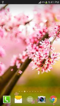 Sakura Live Wallpaper PRO apk screenshot