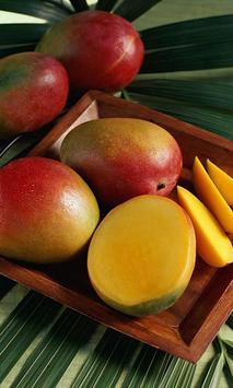 Mango screenshot 1