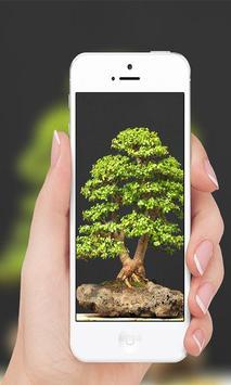 Bonsai screenshot 5