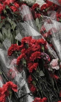 Carnation apk screenshot