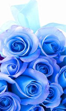 Roses screenshot 4