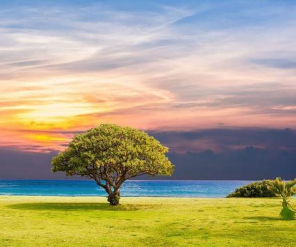 Dream Landscape Wallpaper apk screenshot
